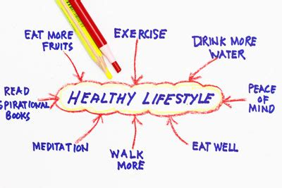 The Balance of a Healthy Lifestyle Essay; Healthy